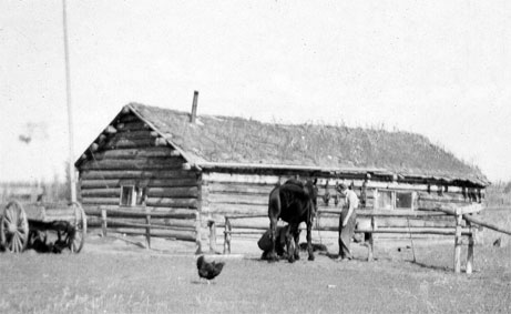 homestead in western Alberta